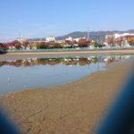 日曜スペシャル【遭遇】宝の下の池底に幻の水竜は存在した!(でござるの巻)
